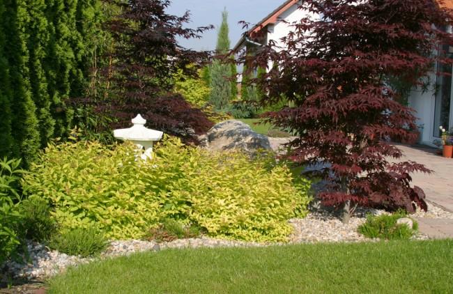 Zahrada - inspirace - Obrázek č. 85