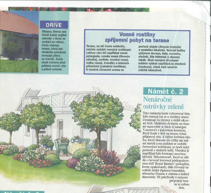 Zahrada - inspirace - Obrázek č. 88