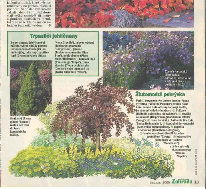 Zahrada - inspirace - Obrázek č. 4