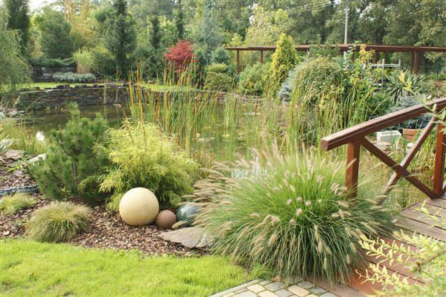 Zahrada - inspirace - Obrázek č. 91