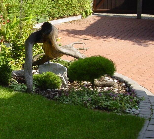 Zahrada - inspirace - Obrázek č. 93