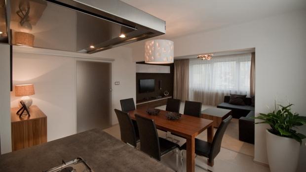 Obývací pokoj s kuchyní a jídelnou - Obrázek č. 57