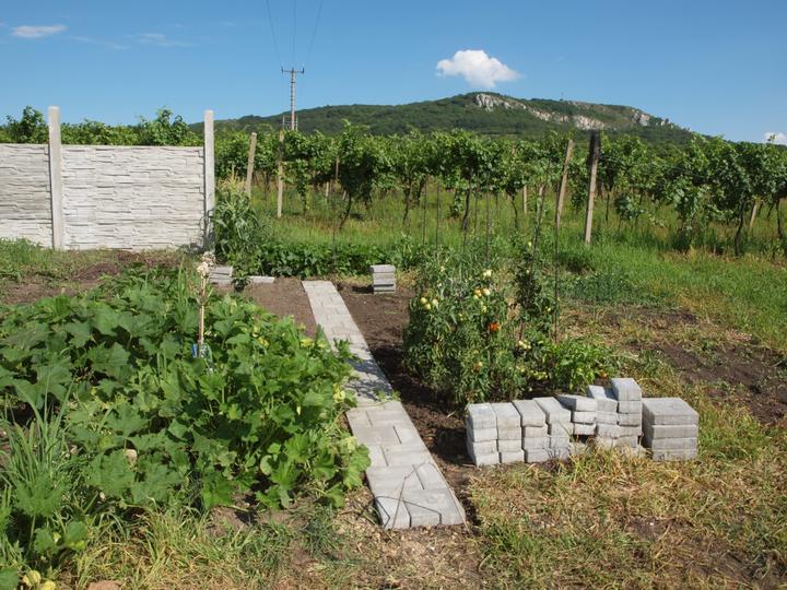 Zahrada - po, dnes položeno