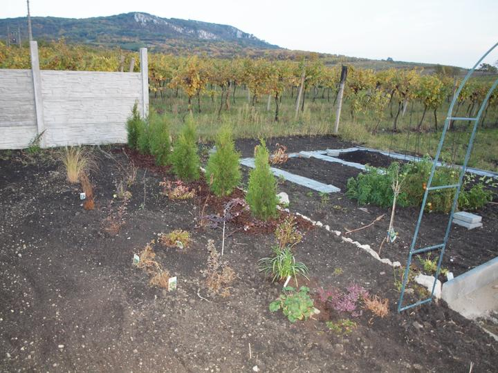 Zahrada - Obrázek č. 63
