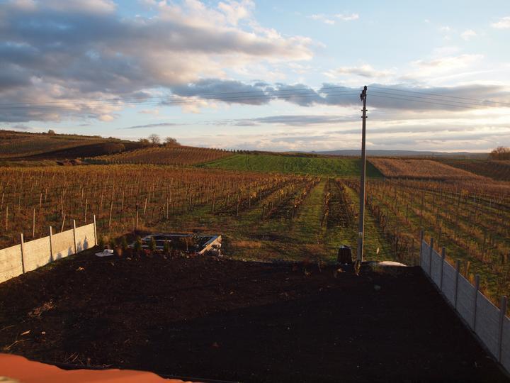 Zahrada - 6.11.2012