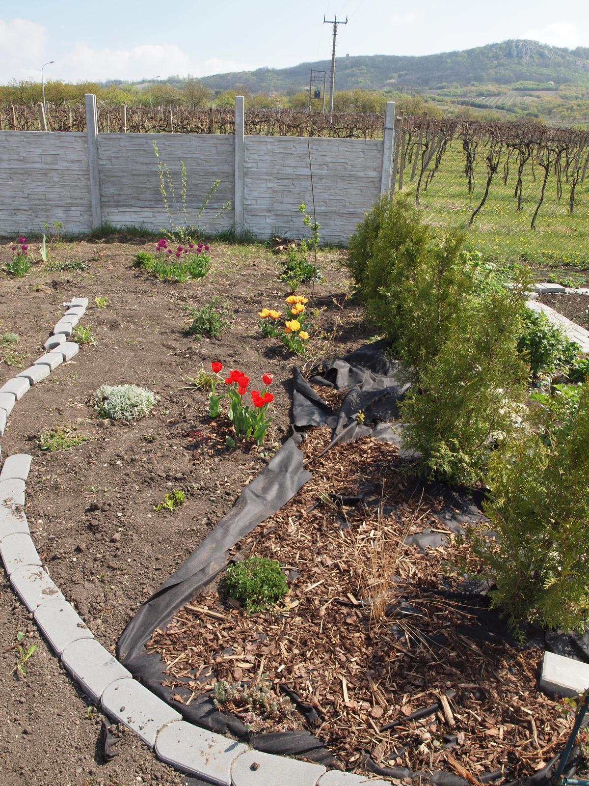 Zahrada - Obrázek č. 65