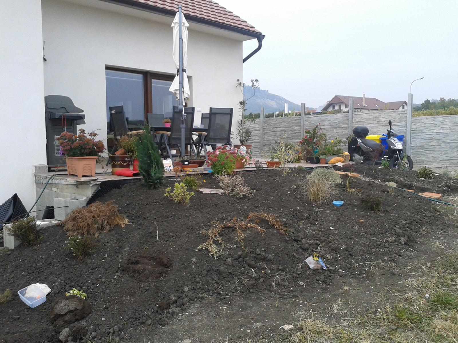 Zahrada - Obrázek č. 87