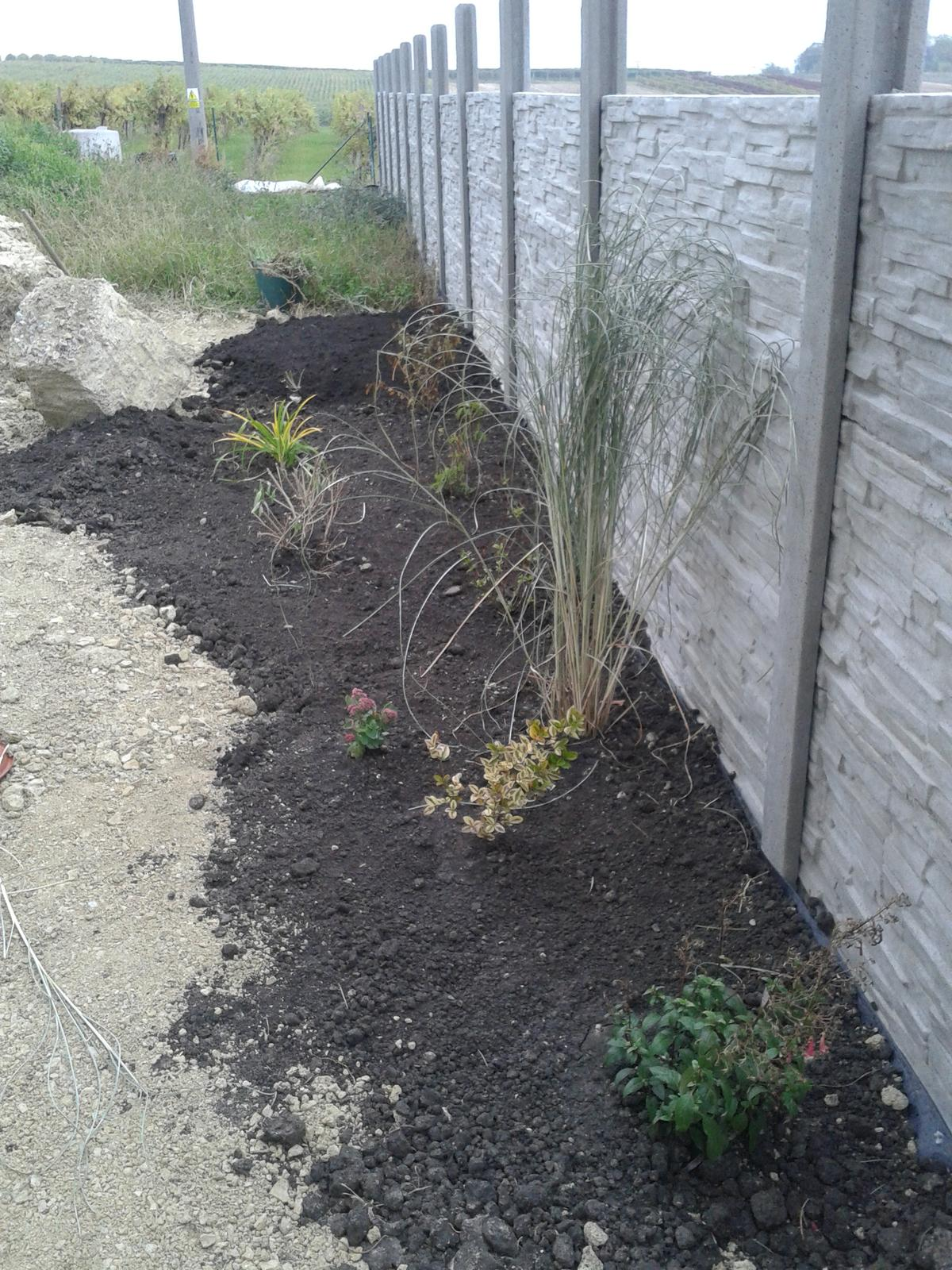 Zahrada - Obrázek č. 80