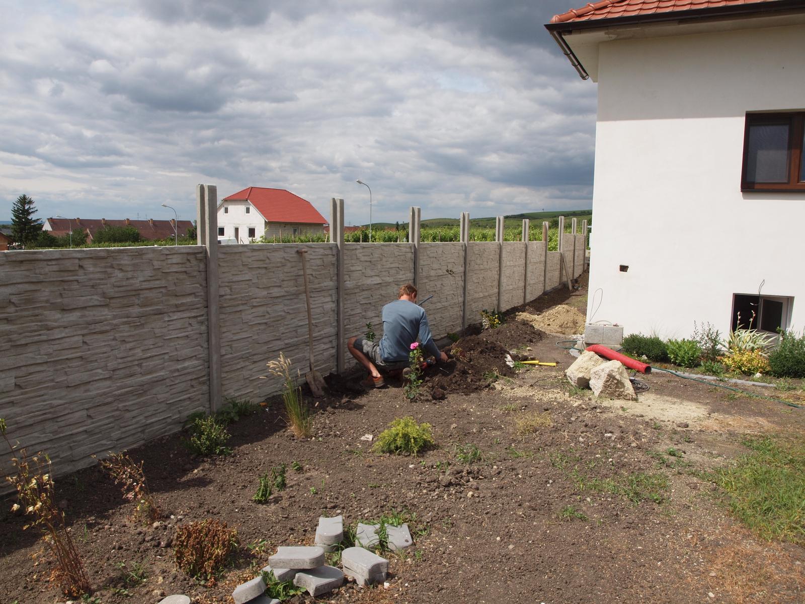 Zahrada - Obrázek č. 85