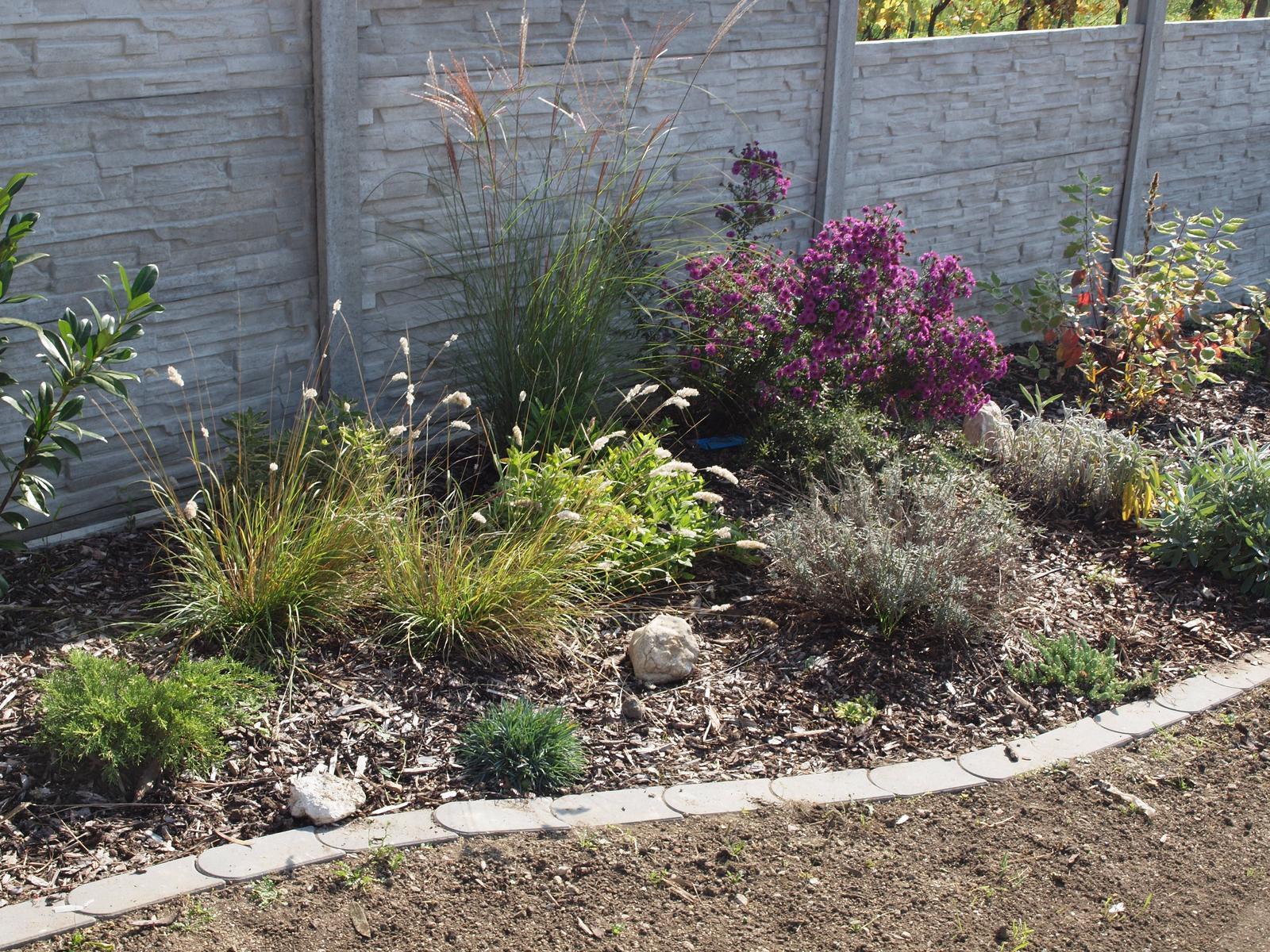 Zahrada - Obrázek č. 45