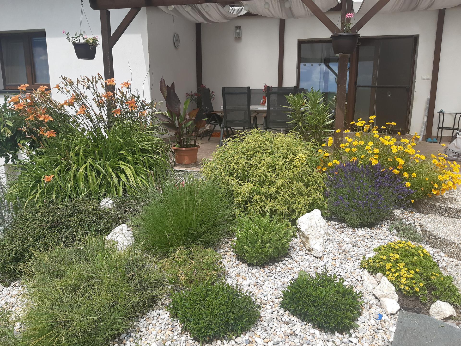 Zahrada - Obrázek č. 150