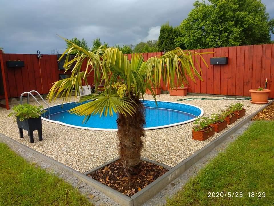 Bazén na zahradě - Obrázek č. 80