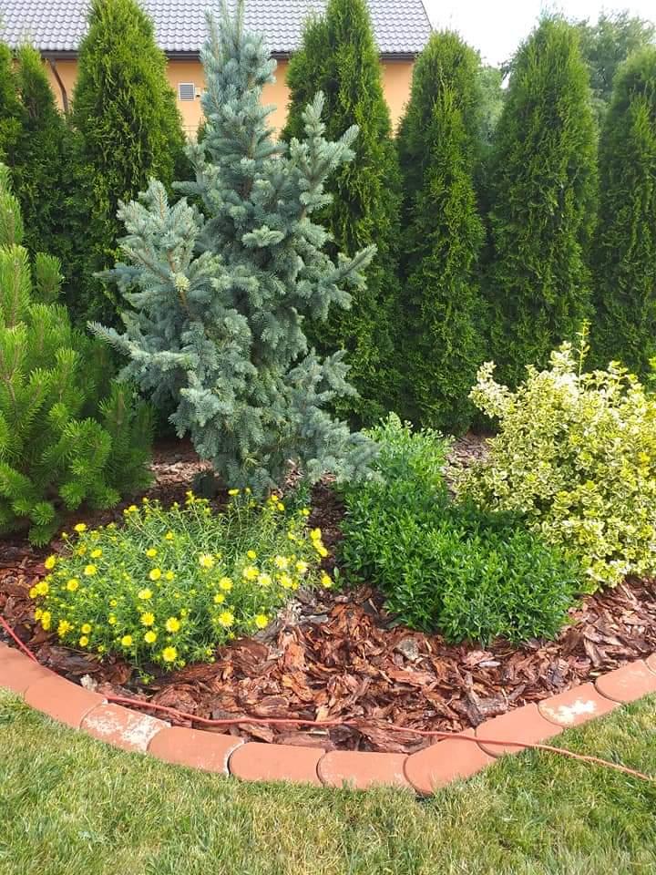 Zahrada - inspirace - Obrázek č. 298