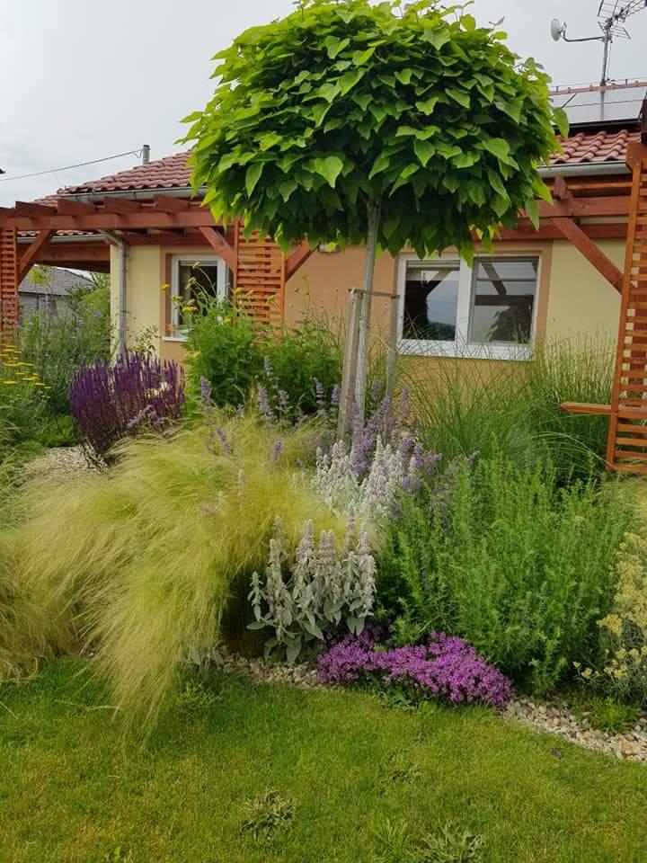 Zahrada - inspirace - Obrázek č. 300