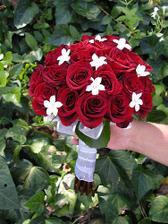 Nádherná, jen chci modré růže