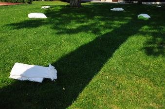 vankuse a deky na trave