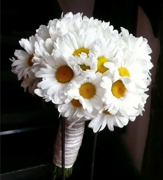 Květina - Obrázek č. 32