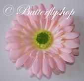 Gerbera - hlávka ružová,