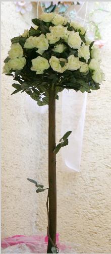 Krík ruží - farba ivory - Prenájom - Obrázok č. 2