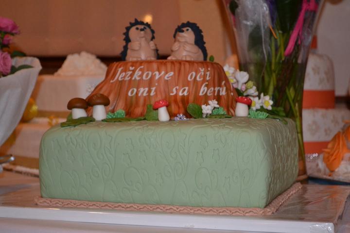 Evka{{_AND_}}Martin - Mamka nam dala upiect takuto krasnu tortu. Zita je najlepsia cukrarka aku poznam :-)