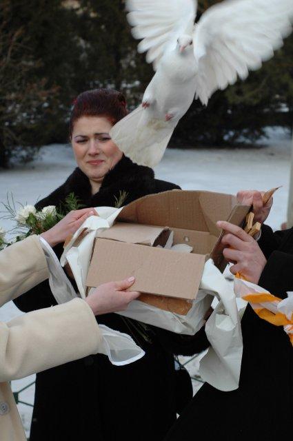 Maria{{_AND_}}Michal - :) dostali sme holubky