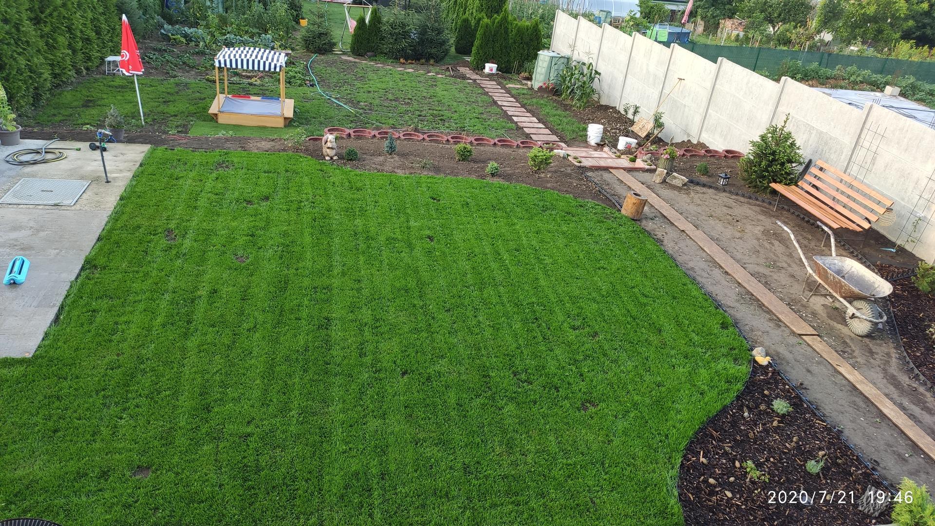 Vrchná záhradka - Takmer 4týždne od vysadenia trávnika, dnes 5te kosenie😊