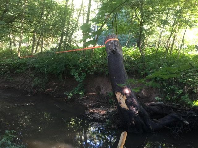 Chalupa pri potoku - Obrázok č. 37
