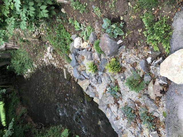 Chalupa pri potoku - Obrázok č. 99