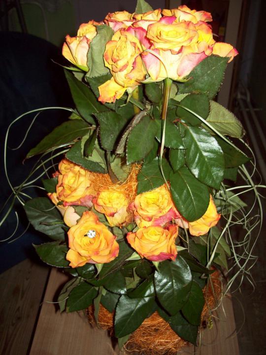 Začíname J+M - moje kvety:)