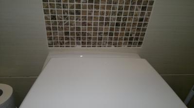 Obkladač měl vše k dispozici (výšku WC i samotný záchod), někde se seknul, chybí 2 cm (mozaiky bylo dost) - nechápu