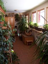 Takhle to u nás vypadá, když se veranda stane zimovištěm venkovním květinkám
