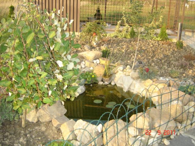 Bungalov 567 - ..jesenne  jazierko...