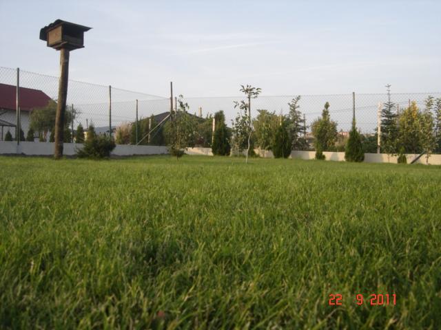 Bungalov 567 - ...cast zahrady...