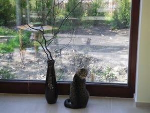 naše největší okno :-) kočka před ním moc ráda sedává :-)))