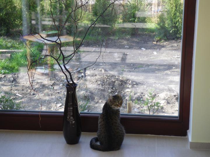 Domek - naše největší okno :-) kočka před ním moc ráda sedává :-)))