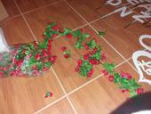 červené růže girlanda řůžičková 2ks,