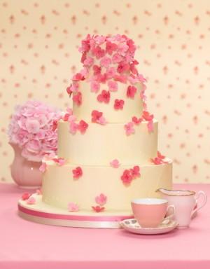 Ružové torty inšpirácie - Obrázok č. 29