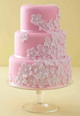Ružové torty inšpirácie - Obrázok č. 50