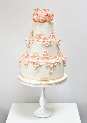 Marhuľové torty inšpirácie - Obrázok č. 11