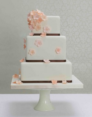 Marhuľové torty inšpirácie - Obrázok č. 40