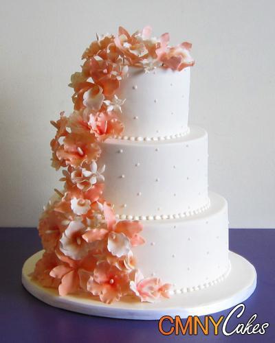 Marhuľové torty inšpirácie - Obrázok č. 41