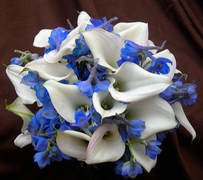 Modré kyticie inšpirácie - Obrázok č. 18