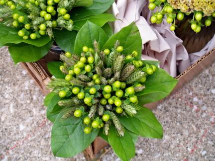 Zelené kytice inšpirácie - Obrázok č. 24
