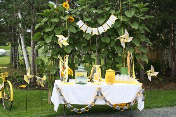 Limonáda na svadbe - Obrázok č. 34