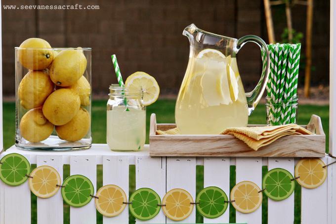 Limonáda na svadbe - Obrázok č. 44