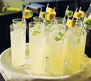 Limonáda na svadbe - Obrázok č. 75