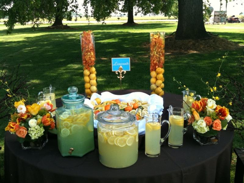 Limonáda na svadbe - Obrázok č. 78