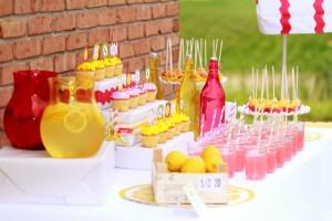 Limonáda na svadbe - Obrázok č. 86
