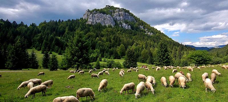 Krásne miesta Slovenska vhodné na svadobné fotenie - Liptovský Ján