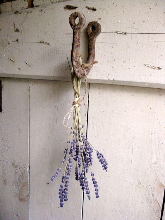 Levanduľová... - Obrázok č. 35